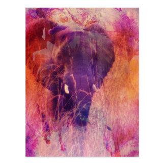 Elefante Cartão Postal