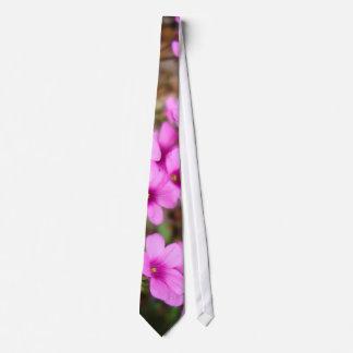 Em meu laço da entrada gravatas com fotos