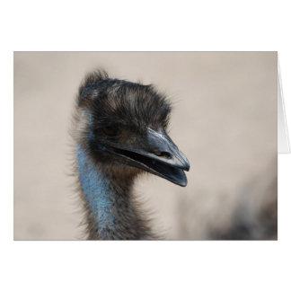Emu Cartão