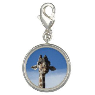 Encanto engraçado do costume do girafa pingentes