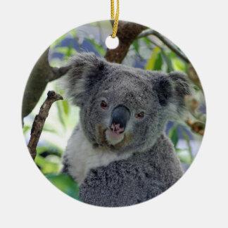 Enfeites de natal adoráveis do koala do bebê