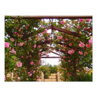 Entrada do jardim impressão de foto