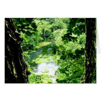Entre as árvores cartão comemorativo