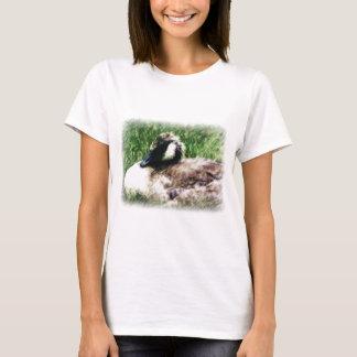 Esboço canadense da foto do ganso do bebê t-shirt