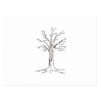 Esboço da árvore cartão postal