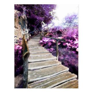 escadas das glicínias cartão postal