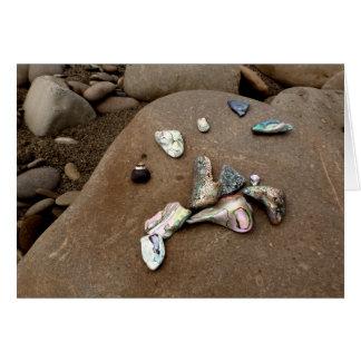 Escudos do olmo em um cartão da praia rochosa