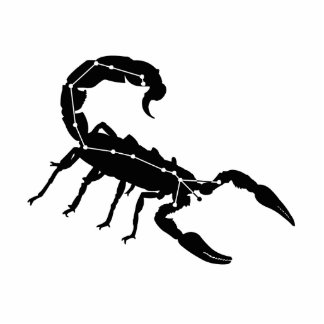 Escultura da foto da constelação da Escorpião/zodí Foto Escultura
