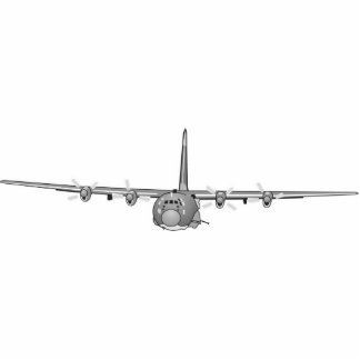 Escultura fixada na parede da foto da arma C-130 Escultura De Fotos