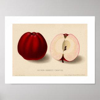 Escuro - poster vermelho de Apple