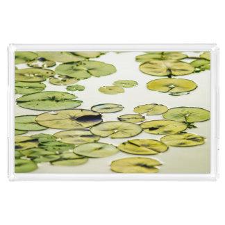 Espera verde de relaxamento da lagoa da almofada bandeja de acrílico