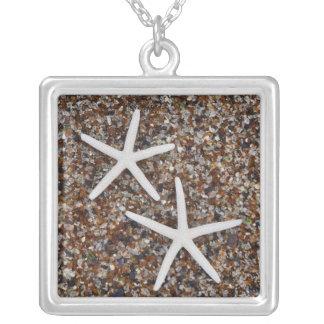 Esqueletos da estrela do mar na praia de vidro colar banhado a prata