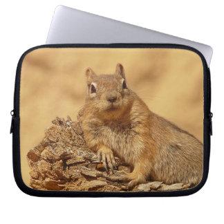 Esquilo à terra bonito bolsas e capas de notebook