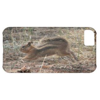Esquilo à terra Running Capa Para iPhone 5C