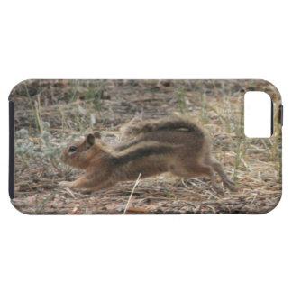 Esquilo à terra Running Capa Tough Para iPhone 5