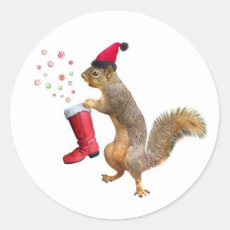 Esquilo com etiqueta da bota de São Nicolau