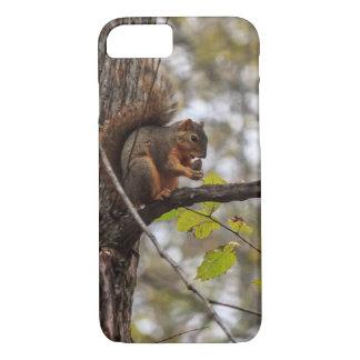 Esquilo com noz capa iPhone 7