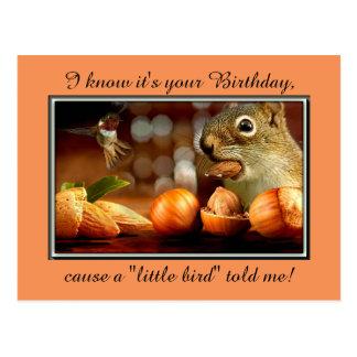 Esquilo do aniversário cartão postal