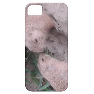 Esquilos à terra capa para iPhone 5