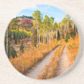 Estrada com as cores do outono porta-copo