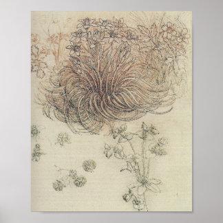 Estudo botânico de Leonardo Pôster