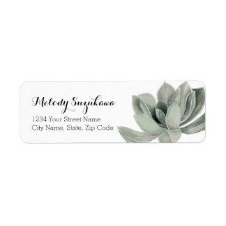 Etiqueta Aguarela da planta do Succulent que pinta