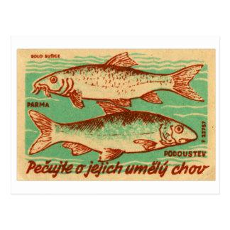 Etiqueta da caixa do fósforo dos peixes de Checo Cartão Postal