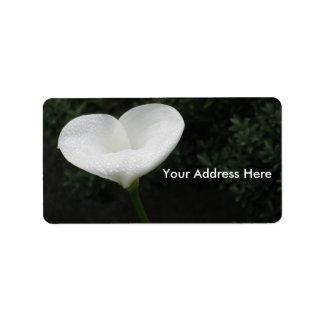 Etiqueta da flor do coração etiqueta de endereço