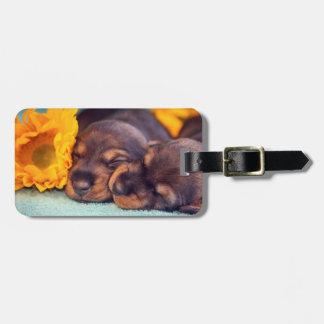Etiqueta De Bagagem Filhotes de cachorro adoráveis do sono Doxen