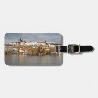 Etiqueta De Bagagem Foto da lembrança da opinião de castelo e de rio