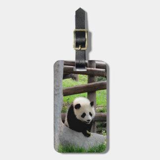 Etiqueta De Bagagem Fotografia da panda - Personalizable
