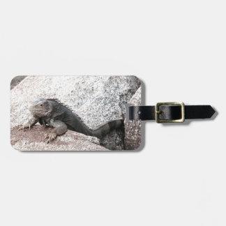 Etiqueta De Bagagem Iguana selvagem