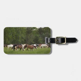 Etiqueta De Bagagem Rebanho dos cavalos, Tennessee