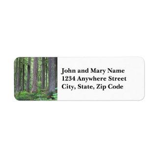 Etiqueta de endereço do remetente verde da