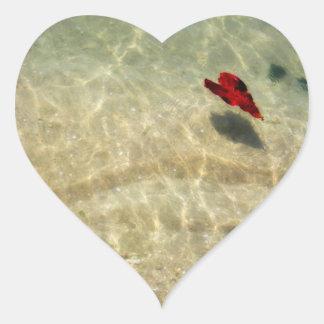 Etiqueta de flutuação do coração adesivos de corações