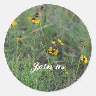 Etiqueta do campo de flor selvagem