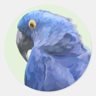 Etiqueta do Macaw do jacinto