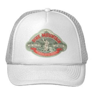 Etiqueta do produto do vintage, água mineral da boné