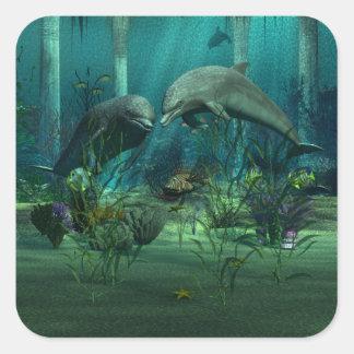 Etiqueta dos golfinhos