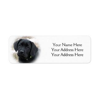 Etiqueta Filhote de cachorro preto de Labrador - caça