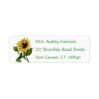Etiqueta Flor amarela floral do verde do girassol do