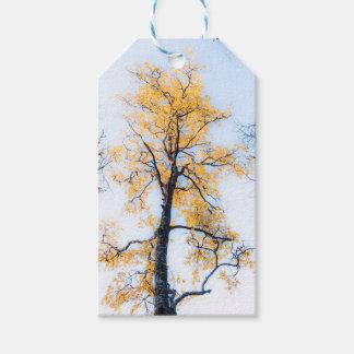 Etiqueta Para Presente Árvore de vida