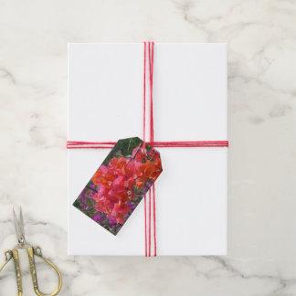 Etiqueta Para Presente Bougainvillea cor-de-rosa tropical