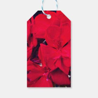 Etiqueta Para Presente Flor vermelha do gerânio