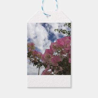Etiqueta Para Presente flores cor-de-rosa contra um céu azul