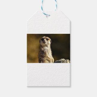 Etiqueta Para Presente Meerkat