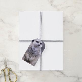 Etiqueta Para Presente Meerkat bonito