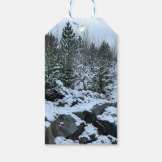 Etiqueta Para Presente Tag do presente de Michigan da paisagem do inverno