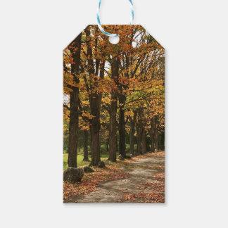 Etiqueta Para Presente Tag do presente do outono da queda de Michigan