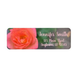 Etiqueta Planta cor-de-rosa da flor da fotografia da